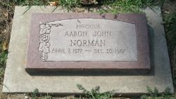 A gravestone. It says: Precious. Aaron John Norman, April 7, 1977 to December 20, 1987.